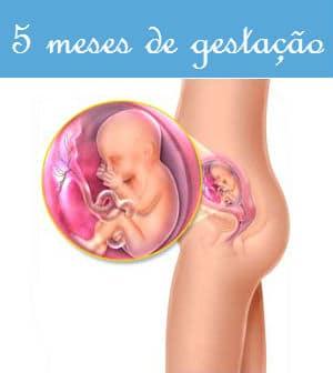 You are currently viewing Gestação de 5 Meses: Fotos e Sintomas da Gravidez
