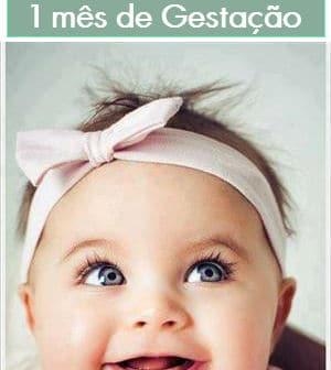 1 Mês De Gestação Sintomas Como Está O Bebê