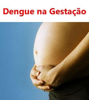 You are currently viewing Dengue na gestação, o que fazer?