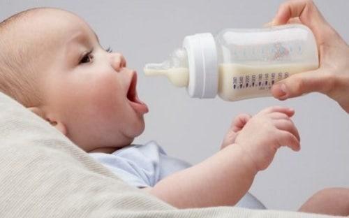 alimentacao do bebe