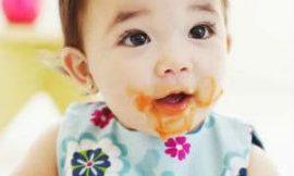 Receitas de papinha de bebê fáceis de fazer
