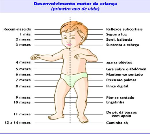 desenvolvimento do bebe mes a mes