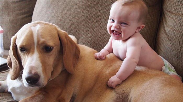Foto de bebe com animais