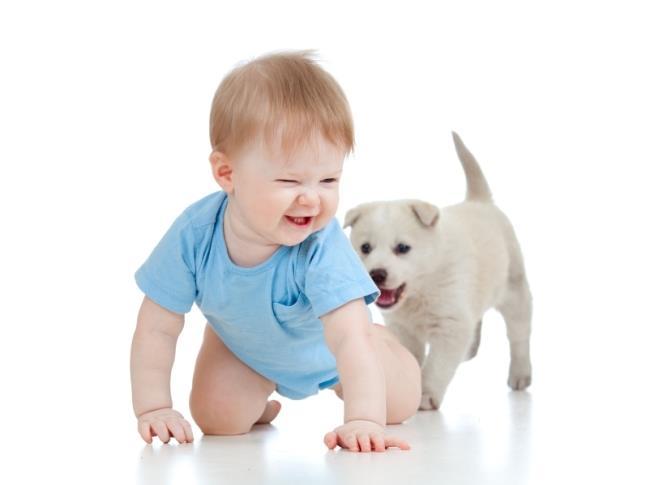 bebe com filhote de cachorro