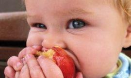 Como fazer o bebê comer mais frutas