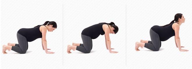 sugestoes exercicios gravidas
