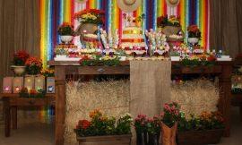 Decoração para chá de bebê com tema de festa junina