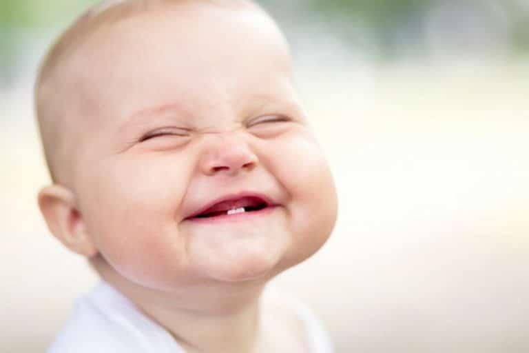 primeira dentição