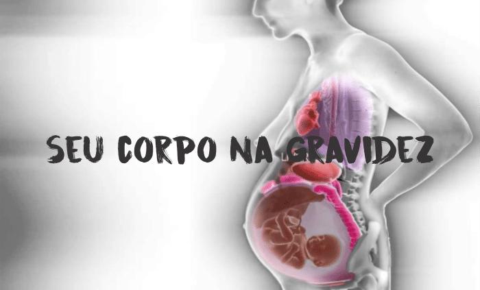 You are currently viewing Gravidez por dentro Passo a Passo – Veja o vídeo