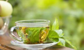 Grávida pode tomar chá de hortelã?