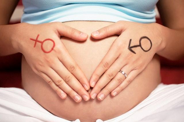 feto de 4 meses tamanho