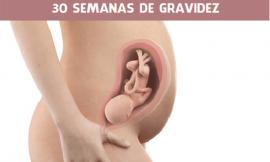 30 semanas de gravidez