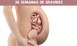 38 semanas de gravidez: O bebê está pronto para nascer?