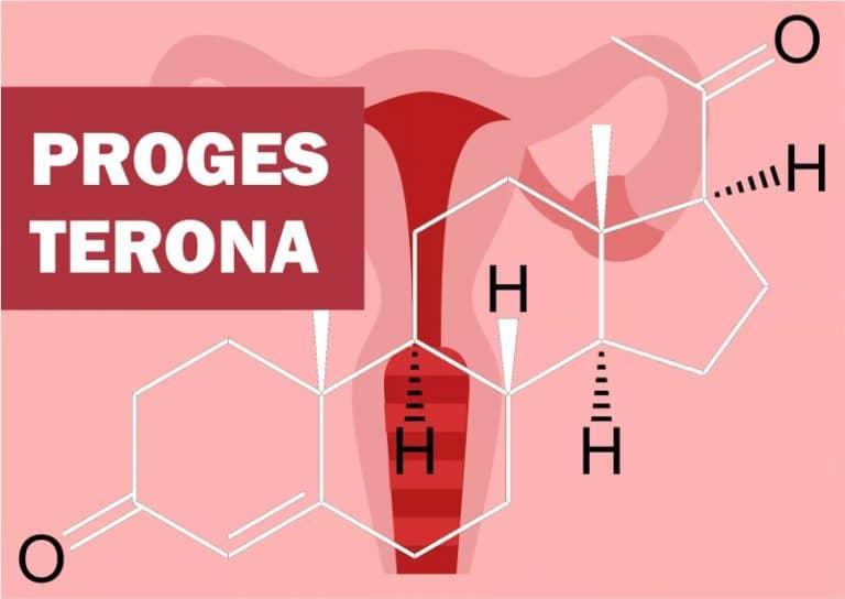 Read more about the article Progesterona: o que é, função, baixa, alta, na gravidez, engorda?