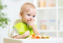 alimentos ricos em ferro para papinha de bebe