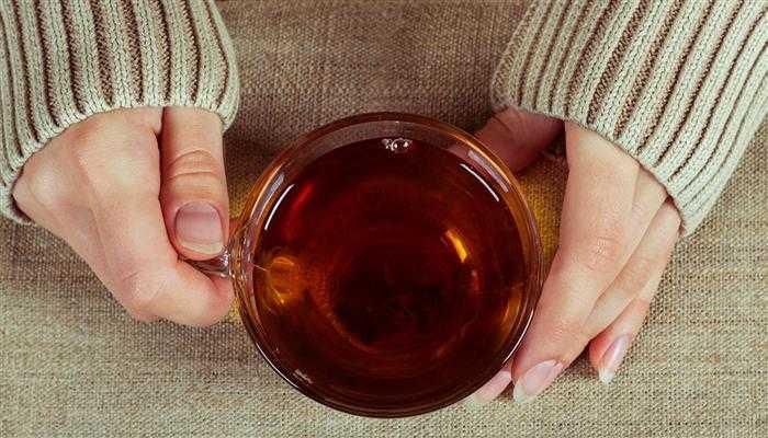 chá de canela aborta