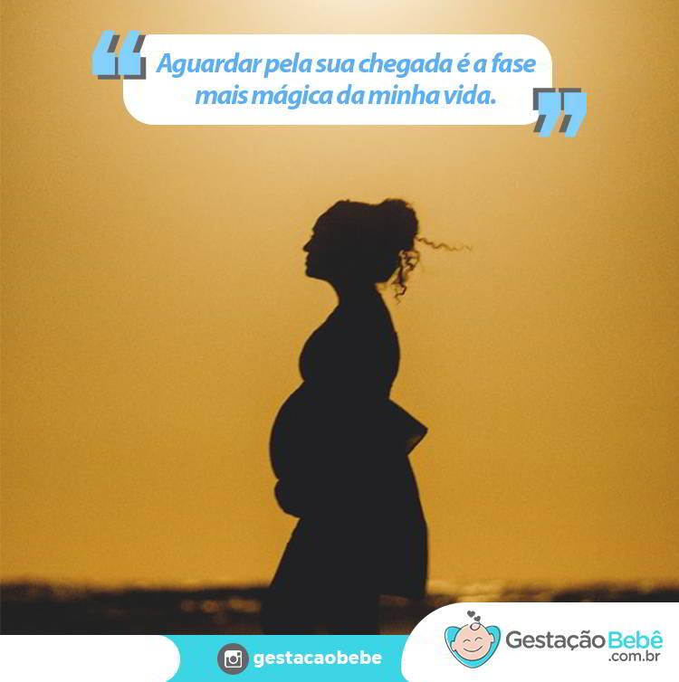 maternidade frases