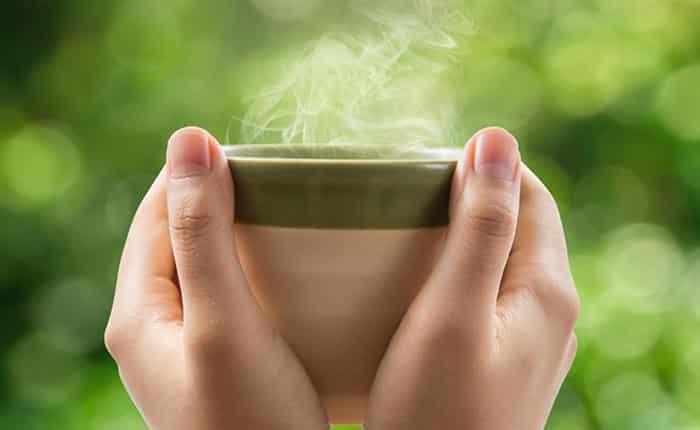 para que serve o chá de boldo