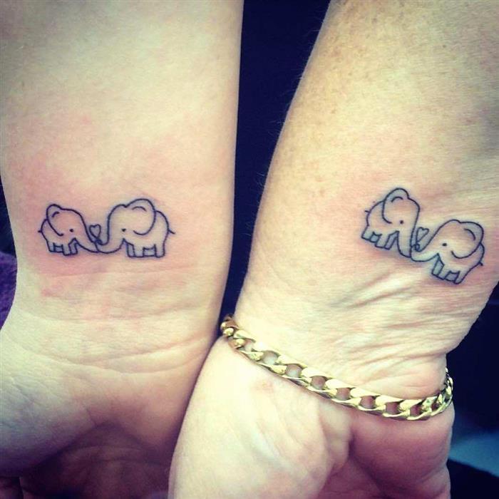 elefantes com coração