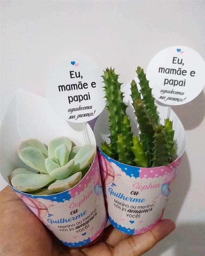 plantinhas para cha de bebe
